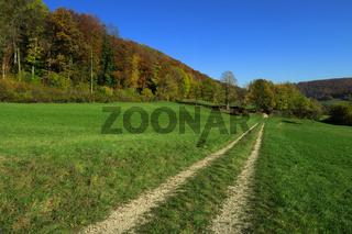 Herbst auf der Schwaebischan Alb