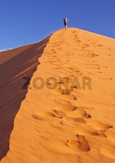 Aufstieg auf eine Düne in der Namib-Wüste, Namibia; walk on a dune in the Namib-desert
