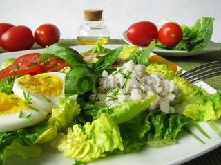 Salat mit Gerstengraupen, Ei und Geflügelfleischwu