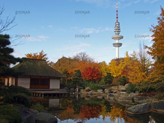 Foto Japanischer Garten Hamburg Bild 961001