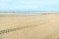 Dutch beach at North sea