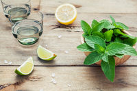 Ingredients for making mojitos mint leaves, lime,lemon and vodka on shabby wooden background.