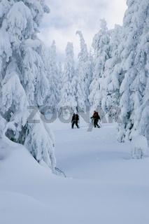 Skitour in der Winterlandschaft zum Gschaideggkogel im Gesäuse
