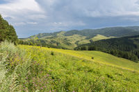 Beautiful summer landscape in Altai Mountains