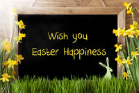 Sunny Narcissus, Bunny, Text Wish You Easter Happiness
