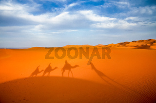 Shadow of a caravan on sand dunes