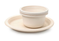Set of biodegradable plastic dishware