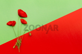 Floral red green card
