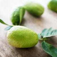 Pesticide free lemons