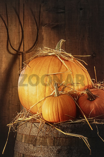 Rustic scene with pumpkins and pitch fork