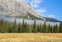 Canadian Rockies, covered by green forest and morning mist