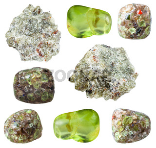 various Peridot ( Olivine) gem stones isolated