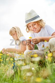 Geschwister Kinder pflücken gemeinsam Blumen