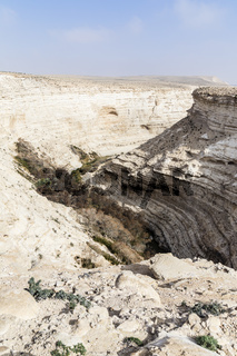 En Advat Nationalpark or Ein Advat, Negev, Israel