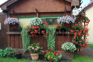 Bunter Hausgarten