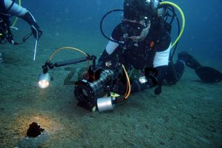 Taucher mit Videokamera filmt einen Haarstern, Federstern (Comanthus sp.)