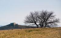 Felsen in der Landschaft im Burgenland