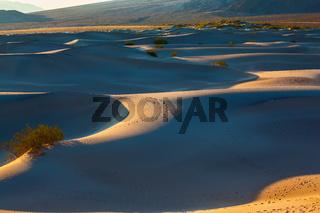 Deep morning shadows between the dunes