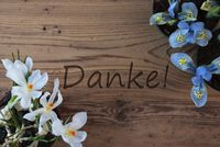 Crocus And Hyacinth, Danke Means Thank You