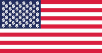usa dollar flag