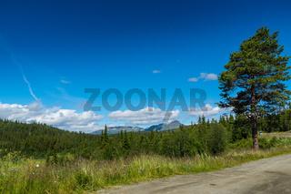 Landschaft in Jotunheimen-31