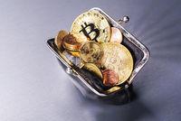 Portmonee mit Bitcoin und anderen Münzen