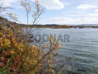 Herbstlandschaft am See Myvatn in Island