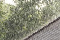 downpour scenery
