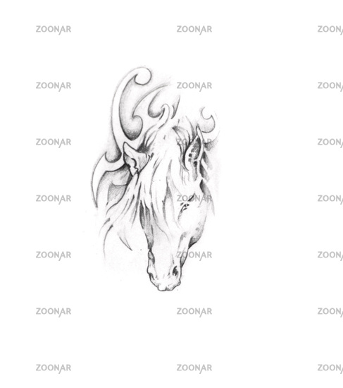 Foto Sketch Of Tattoo Art Horse Bild 2066122