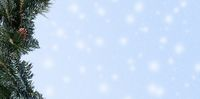 Pine branch with snow in hero header format