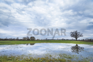 Cloudy sky and tree reflected in water