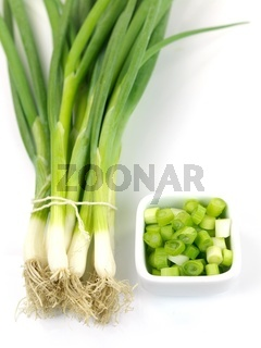 Spring Onions isolated against a white background
