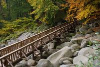 Brücke im Herbst / Bridge at autumn