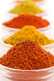 Collection of different hot and exotically spices as closeup on white background