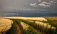 Wind Farm Storm
