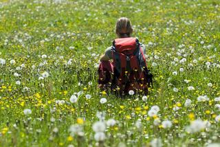 Junge Frau beim Wandern im Nationalpark Kalkalpen, Oberösterreich, Österreich