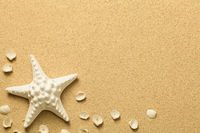 Summer, Sand Background with Starfish and Shells