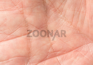 Macro photo of front of old mans hand