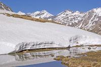 Frühling in den Bergen Südtirols