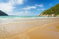 Sealers Cove Beach