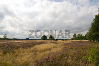 Heideland