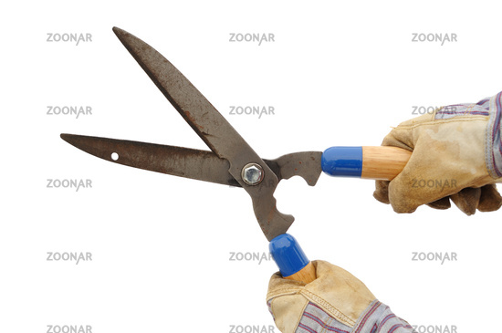 Gardener Holding a Hedge Trimmer Isolated On White