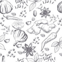 Hand drawn seamless set of organic spices
