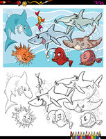 fish marine life characters group color book