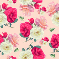 seamless   pattern of rose flowers