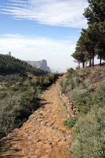 Wanderung vom Cruz Lanos de la Pez nach La Culata