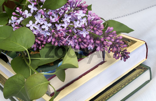 A flowering branch of lilac and books.