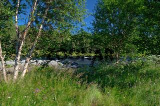 Golsfjellet in Norwegen-2