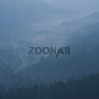 Ausblick im Schwarzwald, prospect in black forest