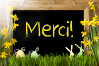 Sunny Narcissus, Easter Egg, Bunny, Yellow Merci Means Thank You